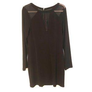 Express mesh v neck long sleeve dress